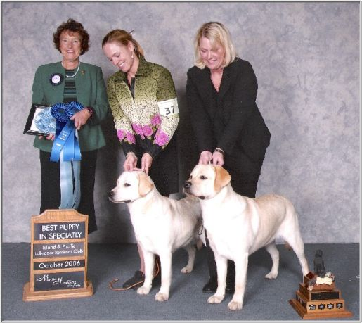 Breeder Judges